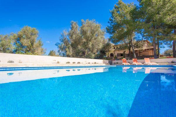Großer Pool mit mediterranen Garten