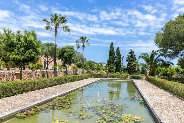 Geräumiger Pool inmitten von Palmen
