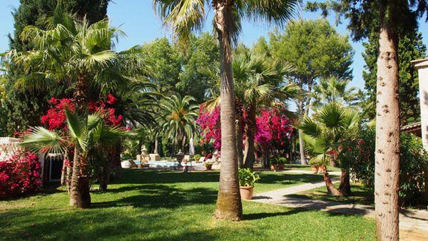 Santa Lucia - Garten